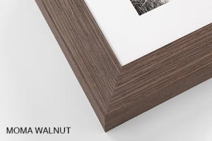 MOMA Walnut.jpg